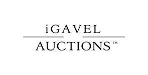 logo igavel